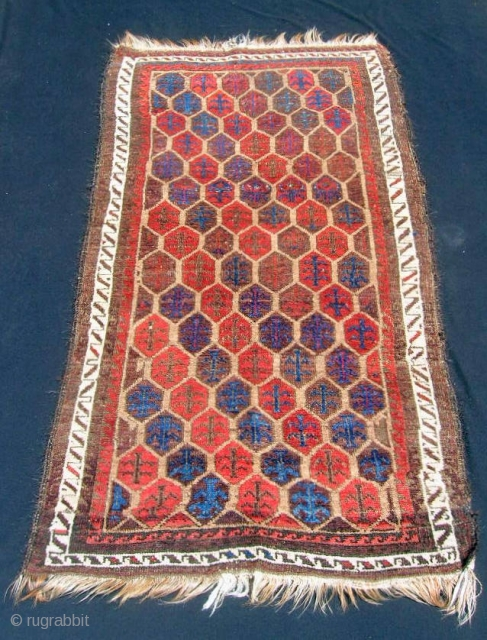 "Baluch small rug, 30 X 56"".  Humble little rug with a tile/shrub design.  Low pile with some knot collars showing and some corrosion of browns - priced accordingly."