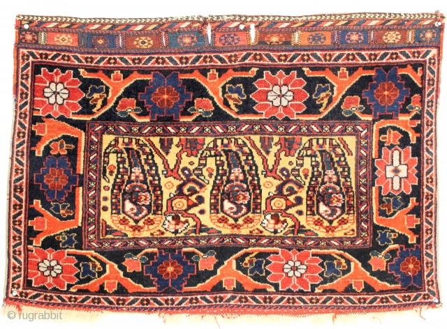 Afshar Bag Face with amazing large botehs on a yellow background with stunning arabesque borders. Woven in Southeast Persia, circa late 19th Century. Measures out to 2-0 x 2-10 ft. Please  ...