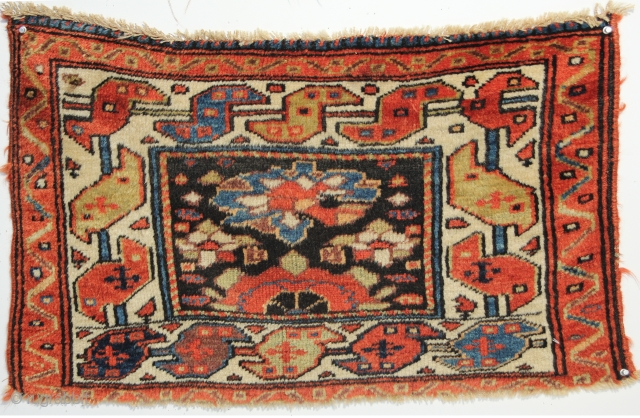 A beautiful Shahsavan/Kurdish Northwest Persian pile Bagface on a wool foundation. Circa 1880. 1-7 x 2-7 ft.