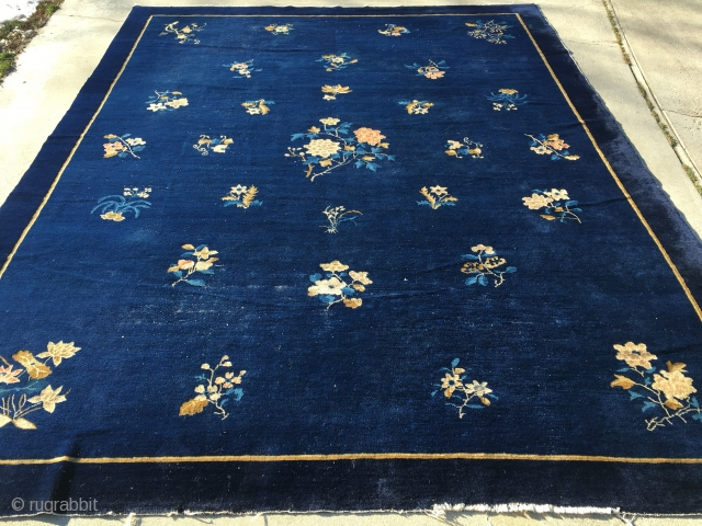 "9'1""x 11'5"" 1910 Peking Rug with typical white heads poking up and a couple of low areas in pile."