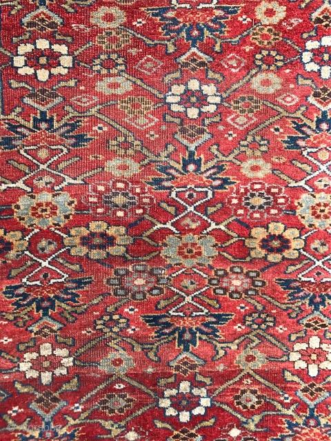 Antique mina khani bijar rug. Late 19th century. 219 x 112cm. Solid condition but slight edge losses. Inexpensive.