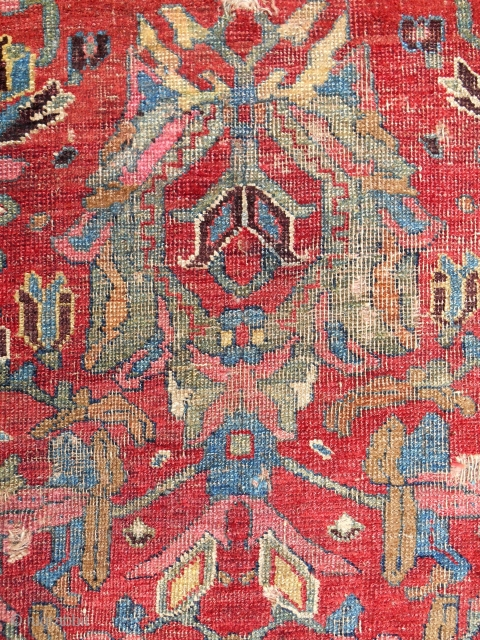 "Northwest Persian ""Blossom"" rug fragment (detail). Inscribed and dated 1820. Best color!"