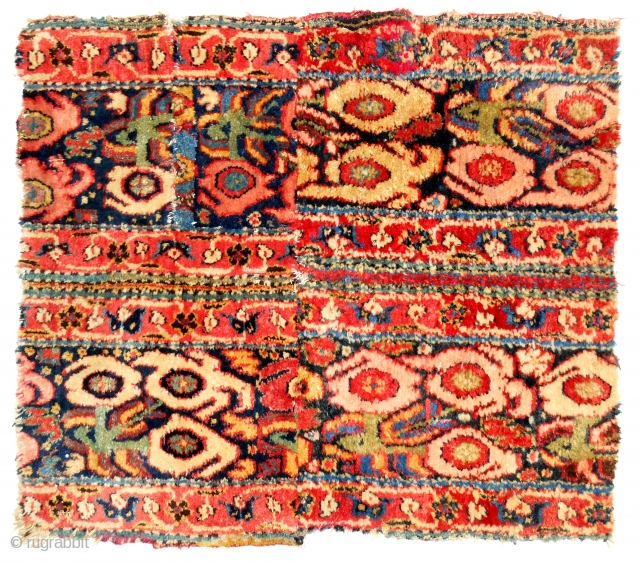 18th C. Persian Khorasan rug border fragment (2 x 2 ft). Full silky pile! Thick & heavy. Really cool & sexy fragment.