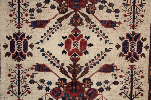 """Tribal elegance"", Afshar rug, 165x140 cm, fantastic spacious drawing on an ivory ground surrounded by 4 stripes of very well drawn, meaty borders, saturated, all natural colours, good, partly full pile overall,  ..."