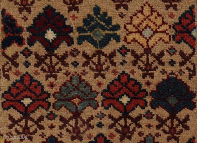 Pile khorjin half, opened out, Shirvan plain, 53 x 113 cms.