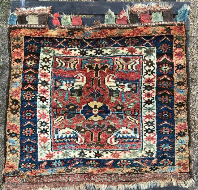Large Kurdish pile bag face, North West Persia, 71 x 67 cm, characteristic soft glossy wool, excellent colours, long pile, some nibbles, a few holes (mostly not obvious because of the long  ...
