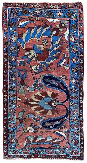 One of ten, fresh to the market antique Bidjar and South Persian tribal rugs to be offered next week. Go to our newly launched greatly improved website next week for details. Bidjar  ...
