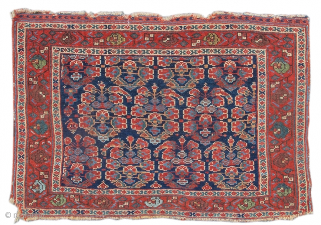 This colorful Afshar bag face draws a familiar theme of 'boteh' paisleys against a deep indigo ground. The botehs here are openly drawn, integrating the blue ground with clusters of flowering buds.  ...