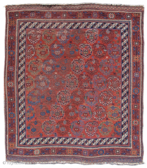 Afshar rug: Colorful diagonal rows of 'boteh' paisleys are formed from wispy flowering plants against the saturated ochre ground of this Afshar rug. The 'boteh' forms are drawn freely, more as tracery,  ...