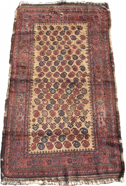 """camel ground Baluch rug with stylized botehs, 2'10""""x5'0""""  https://www.peterpap.com/product/baluch-rug-27/"""
