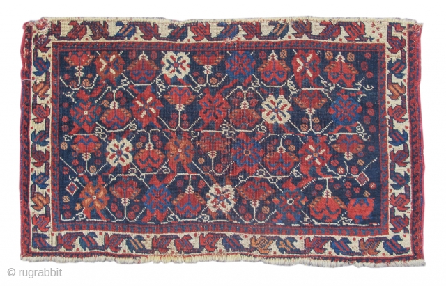 This charming Afshar bag face uses rich saturated vegetable colors and soft glossy wool, with rows of alternating flowers and blossom heads drawn against the indigo field. This floral repertoire may ultimately  ...