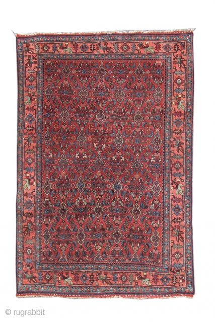 Bidjar Rug,