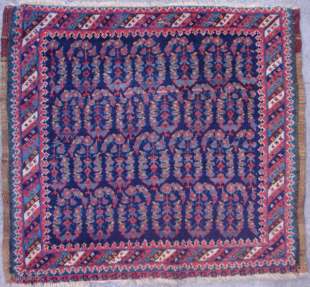 """Afshar Bagface with botehs and vivid blue. 2'3"""" x 2'7"""". 4th quarter of the 19th century. Inv. #14818."""