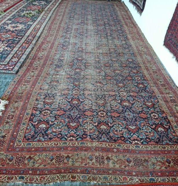 Fereghan carpet, natural   color  208x508cm 1300usd