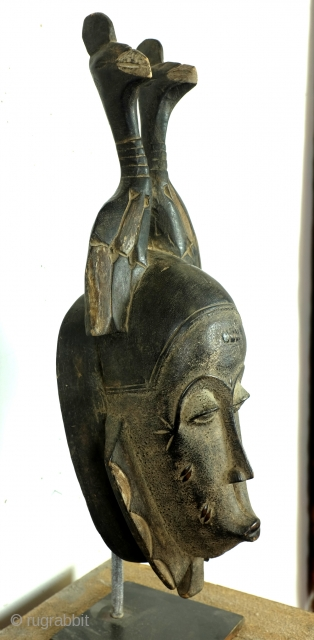 Baoulé, 
