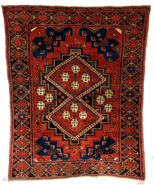 Antique Afshar, doj Goli i parizi = two flowers from Parizi is the name of the design. 175 x 145 Cm. This Beautiful flamimg red recolls the earlier Caucasion origin of the  ...