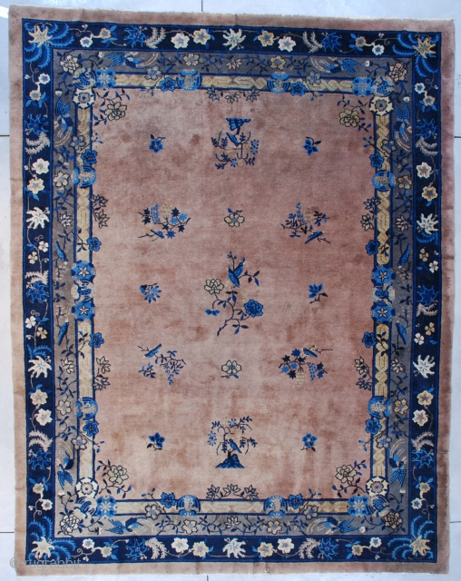#7544 Peking Chinese Rug