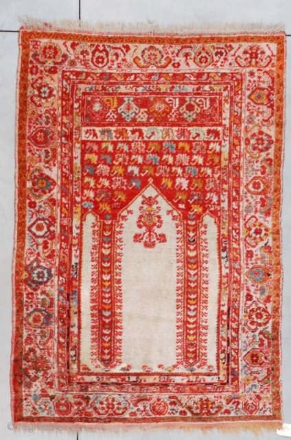 """#7259 Angora Kula  This last quarter 19th century Angora Kula measures 4'4"""" X 6'3"""" (135 X 192 cm). It is a coupled column prayer rug with an ivory field and red spandrels with  ..."""