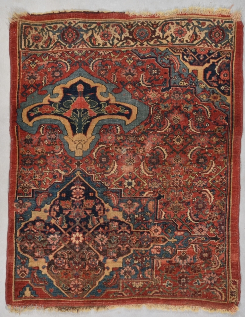 #7740 Bidjar Wegeirah