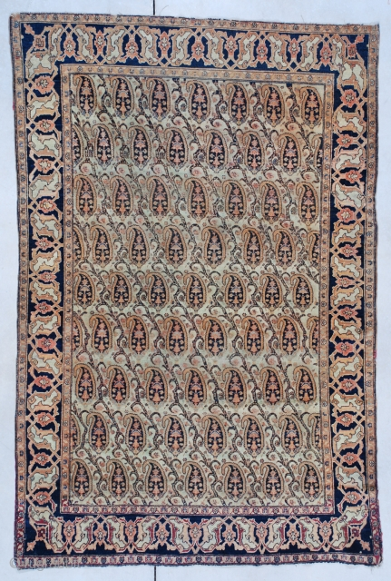 #7462 Fereghan