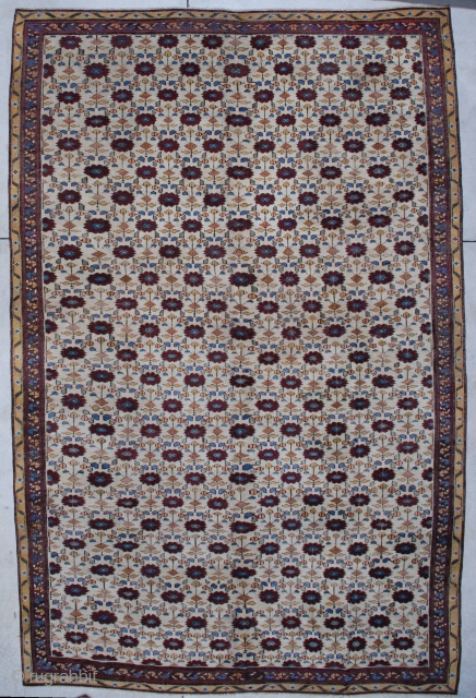 """#5193 Antique Agra  This Agra measures 7'11"""" x 11'11"""". It is a 19th century rug with an overall design in corduvan on an ivory ground. The outer border is meandering vine design with  ..."""