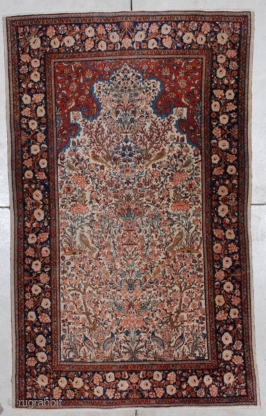 #7206 Fereghan Sarouk