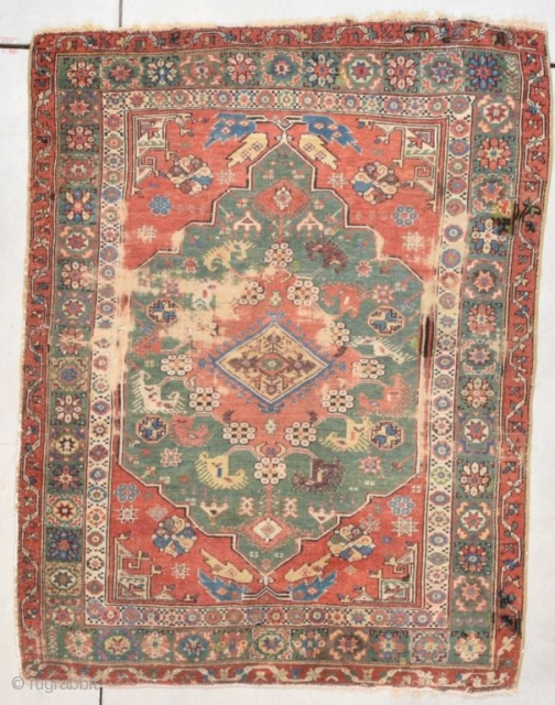 #7786 Dazkiri Rug