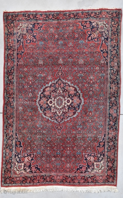 Bidjar Persian Oriental Rug #7952