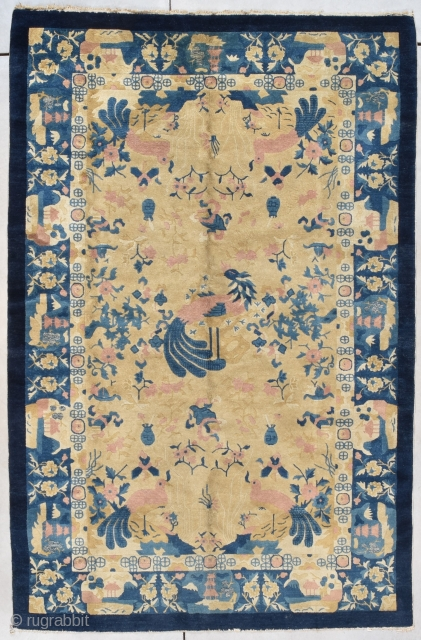 "This circa 1900 Peking Chinese Rug #7970 measures 4'3"" X 7'11"". There is a pair of pink birds with large blue tails and tongues. Another large bird serves as a center medallion  ..."