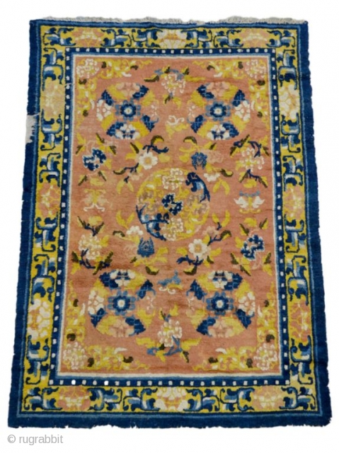 #7341 Ningxia