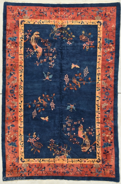 """This circa 1920 Art Deco Chinese rug #7964 measures 5'0"""" X 7'10"""". It has an indigo blue field with two birds, one in each corner, perched on a branch in yellow, orange  ..."""