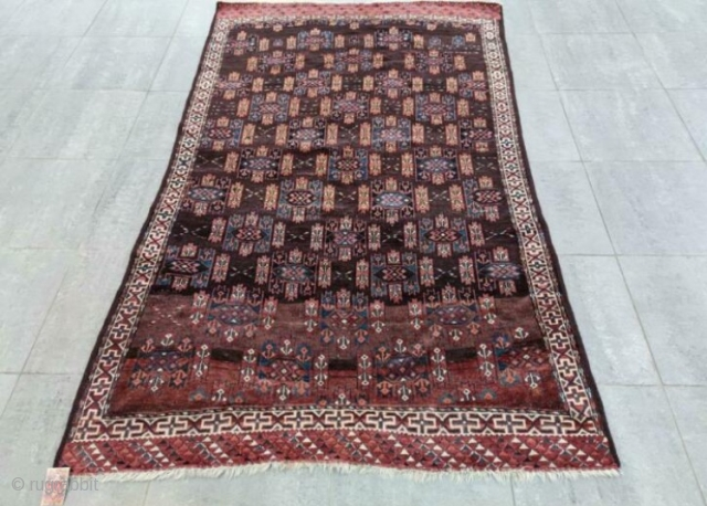 Turkman Yamoud 