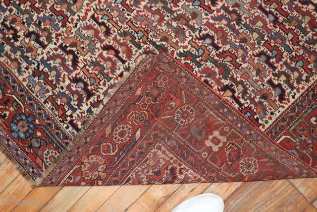 Antique Chicken Morghi Shiraz.  4'2''x5'11''.  Overall good condition.  Has some scattered low areas.