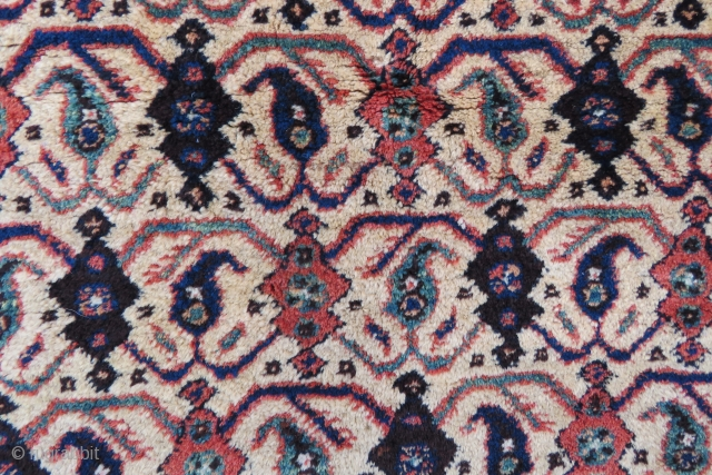 Avshar rug wonderful colors and excellent condition all original size 1,57x1,17 cm Circa 1900