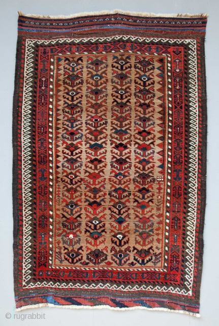 Baluch Rug 167 x 110 cm                           