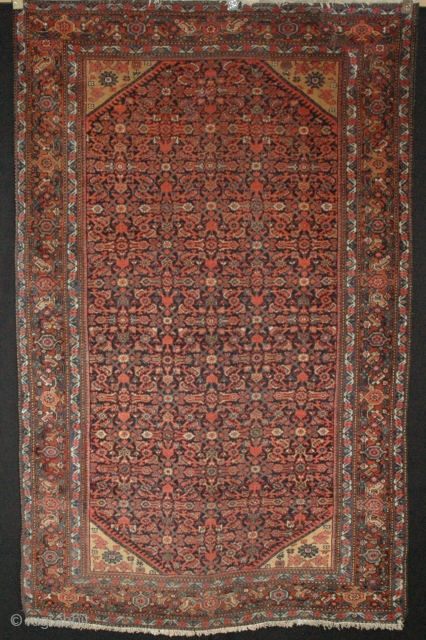 P12 Farahan 200x126cm, Circa 1900, Very pretty piece with good pile. A small hole restored, towards the top corner, as shown in the photo.