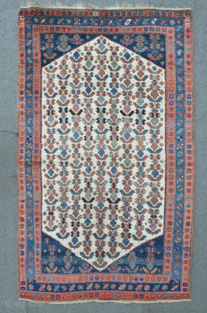 Antique Persian Kurdish Carpet, 222 x 128 cm, heavy, meaty floor, excellent colors