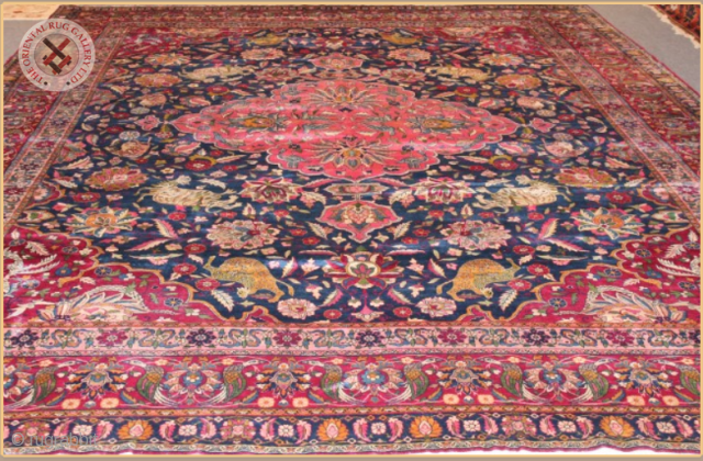 TR1113-