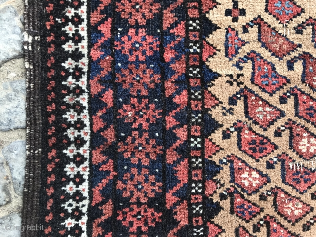 really old camel ground baluch rug, shirazi has open parts and some areas are worn, no restoration, as found, 157 x 92 cm, 61,8 x 36,2 inches