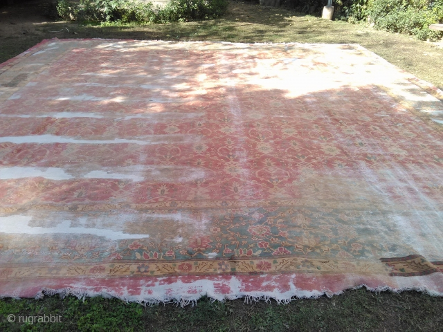late 19th century Amritsar, Northern India carpet