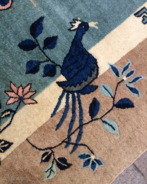 China Patau Carpet  size 300x215cmm