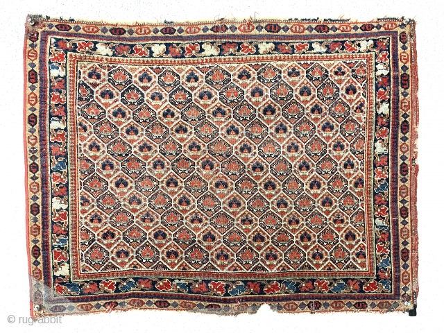 Antique large early south Persian bagface, possibly qashqai. Lovely example of an uncommon type. Nice fine weave. Soft supple handle. All excellent natural colors. Mostly decent even pile with scattered wear as  ...