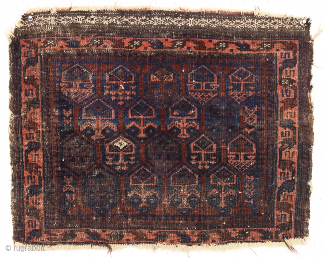 "antique little baluch bagface with classic shrub design. Just picked. As found, dirty with overall decent pile, some edge roughness. Good age, ca. 1875. Needs a good was and priced accordingly. 20""  ..."