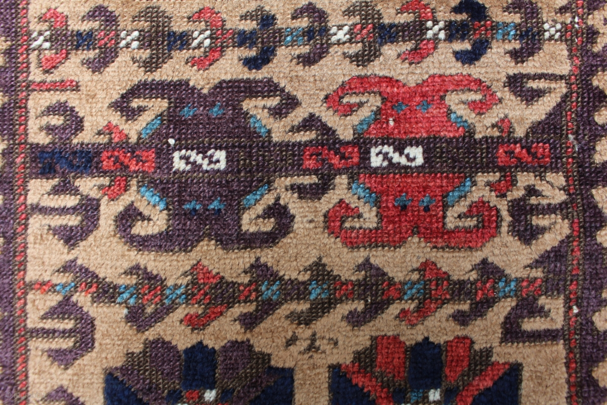 Need Asian camel rug Bell Evans
