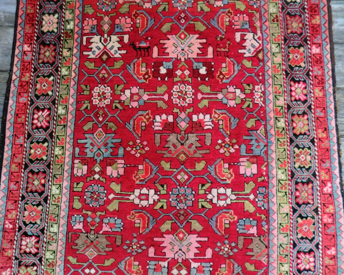 Antique Caucasian Rug Runner Shirvan 3 5 Ft X 10 Ft