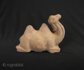 Tang Dynasty Camel: Classic pottery Bactrian camel from the Tang Dynasty. This is a very charming piece which evokes the spirit of The Silk Road in ancient times. Molded from straw colored  ...