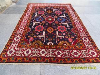 Caucasian Shirvan Karakasli size: 171x116 cm.