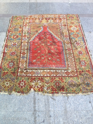 Antique Anatolian Mucur Carpet Fragment Size  150x122