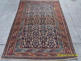 Antique Caucasia Shirvan Konackent size: 165x115