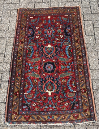 Rare Heriz vagireh, size 53.5 x 34. 2 inch (136 x 87 cm). Glowing colors, fat wool, mint condition, only the lower end reduced by a couple of lines. Not seen a  ...